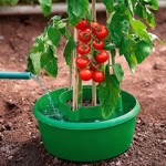 Tomatengewächshaus Bewässerungsring