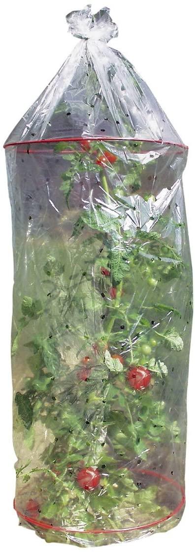 Tomatenhaube mit Abstandsringen